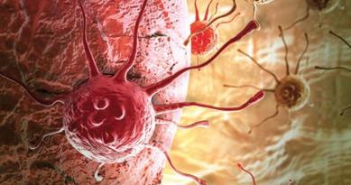 数種類のがん細胞標的ペプチドを組み合わせた根治療法が1年以内に実現
